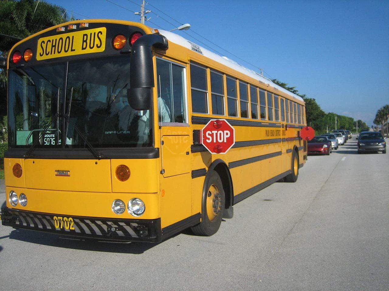 image of school bus via wikicommons