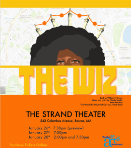 image of the wiz flyer
