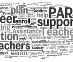 Par Peer Support Word Cloud