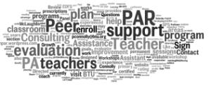 Par Peer Support Word Cloud